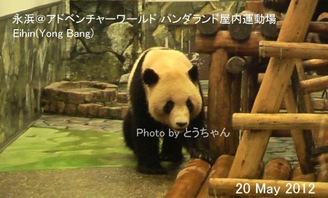 6-02-1_永浜01.jpg
