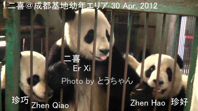 8-01-1_二喜.jpg