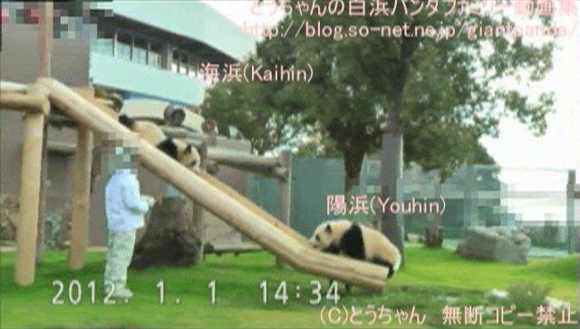 海浜&陽浜すべり台特集②(2012.01.01編)_0002-0416J_003.jpg