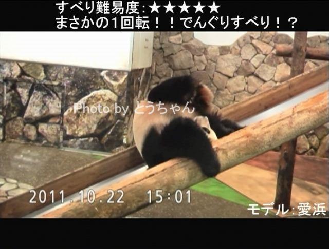 LV5_まさかの1回転!!でんぐりすべり!?.jpg