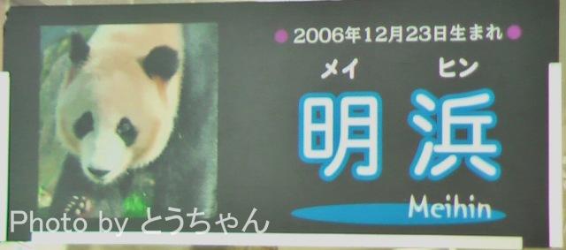 3-09-0.jpg