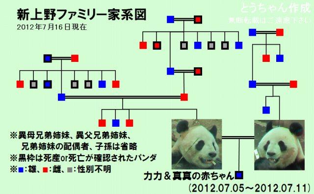 s-新上野家系図.jpg